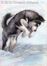 Resultado De Imagen Para Cachorros A Lapiz Dibujos De Animales