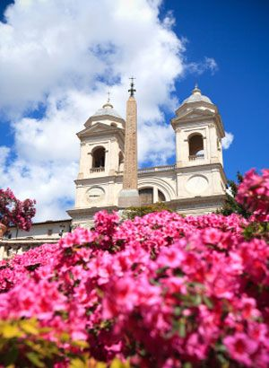 Azaleas on the Spanish Steps, Rome, Italy