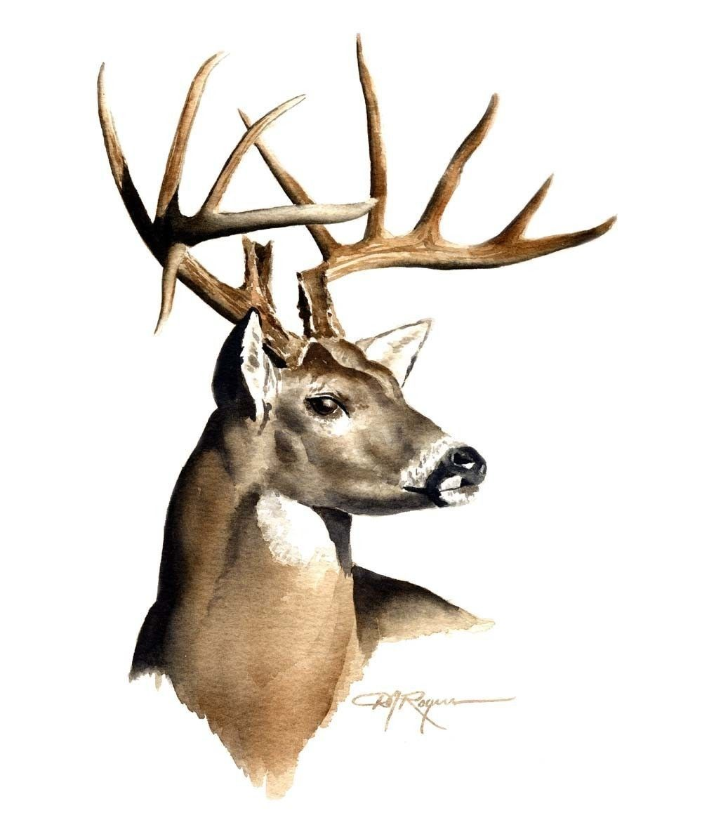 White Tail Deer Sckull Drawn: This Gorgeous Deer Skull Is Hand Painted With Brown