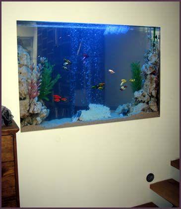 Aquarium Group Through Wall Blue Lit Tropical Fish Tank Aquarium