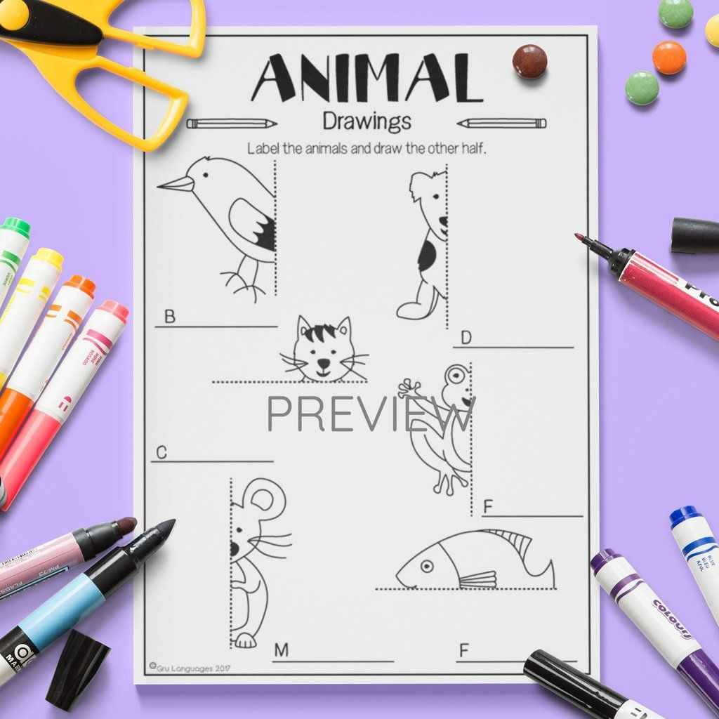 Animal Draw The Other Half