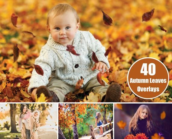 40 Autumn Leaves Overlays - Falling Leaves - Photoshop Overlays #autumnleavesfalling