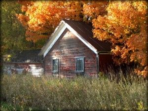 """""""The Shed"""" - Fall Photo Contest submission by Vicki L for a chance to win a Honeymoon Anytime Package.   ---  There are still TWO days left to enter your own photo for a chance to win a romantic getaway at Heidel House Resort & Spa."""