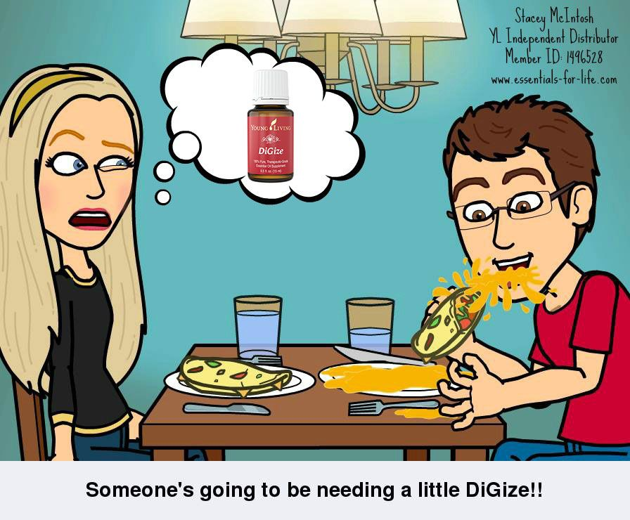 DiGize saves the day for digestive distress! - Stacey McIntosh YL Independent Distributor #1496528 http://www.essentials-for-life.com/blog/2015/2/15/highlight-on-digize