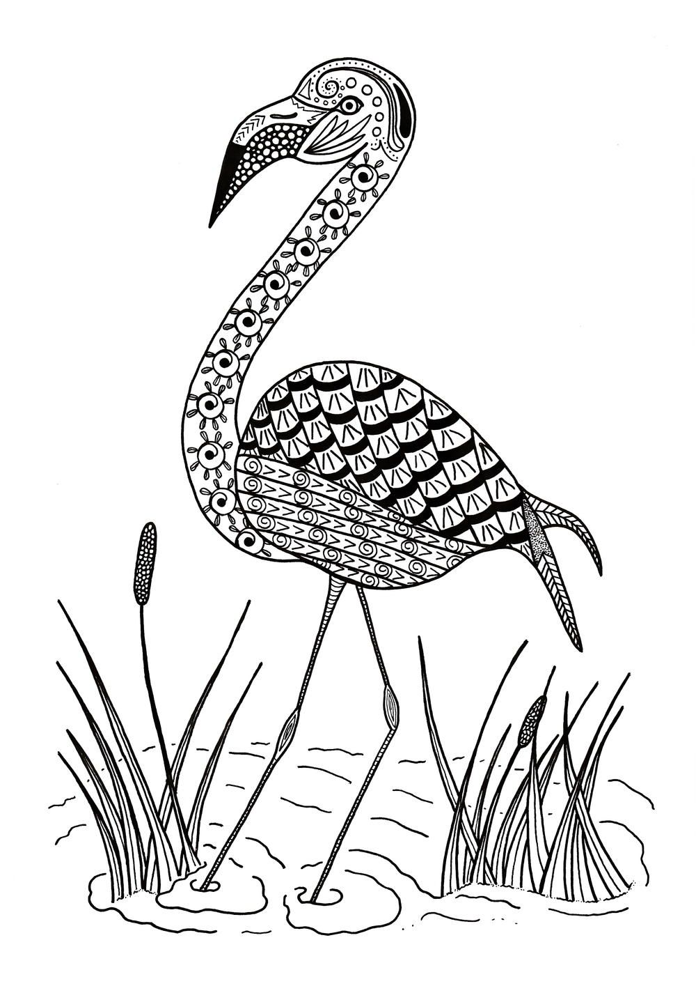 Graceful Flamingo Adult Coloring Page Coloring Pages Flamingo