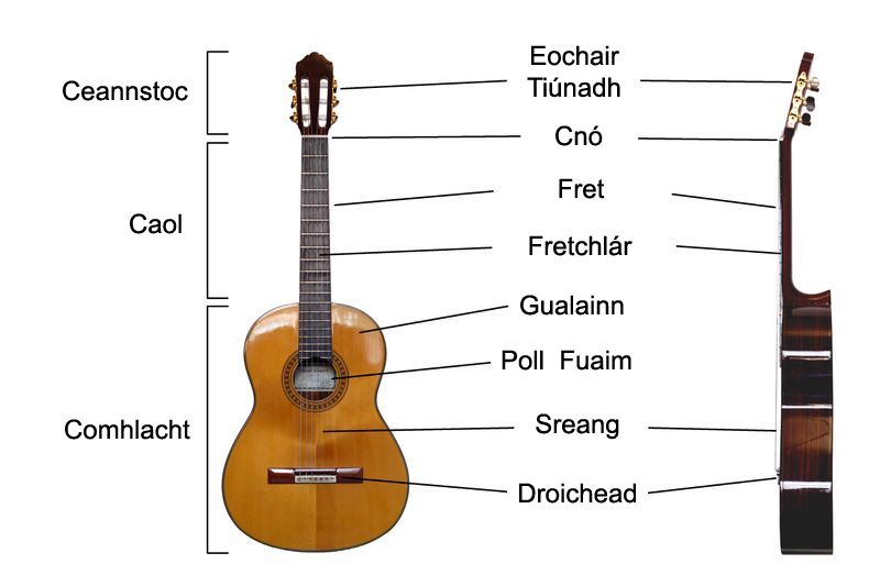 Iomha Classical Guitar Labelled Irish Jpg Vicipeid Guitar Classical Guitar Lessons Classical Guitar