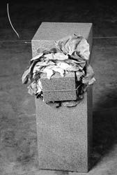 anselmo's untitled 1968 - aka the sculpture that eats lettuce