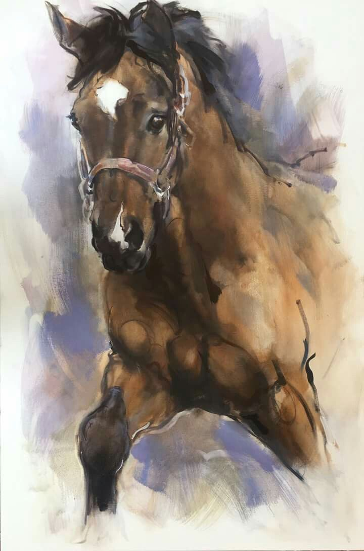 Pin von hector alvarez auf corseles   Pinterest   Pferde und Kunst