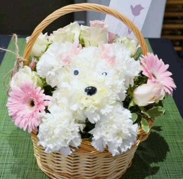 Arrangements Carnation Flower Puppy