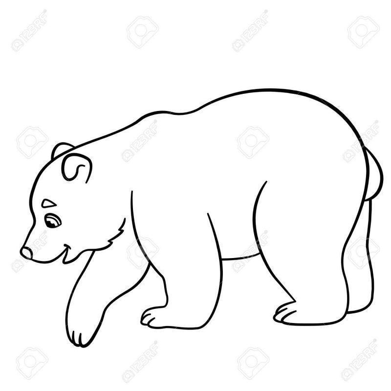 Oso Polar Para Colorear Coloring Pages Colorful Pictures Color