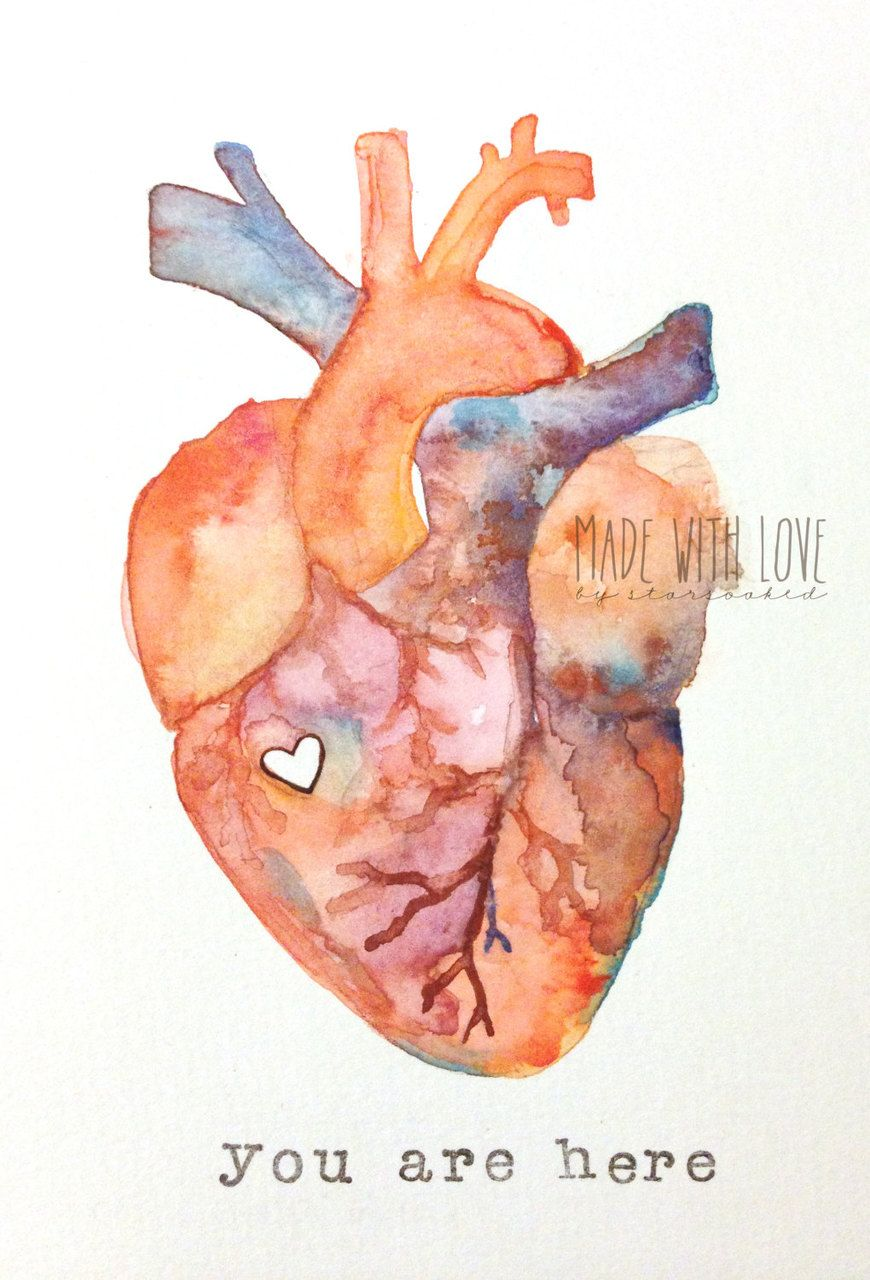 Anatomy of Love Human Heart Watercolor Print by stars0aked on We ...