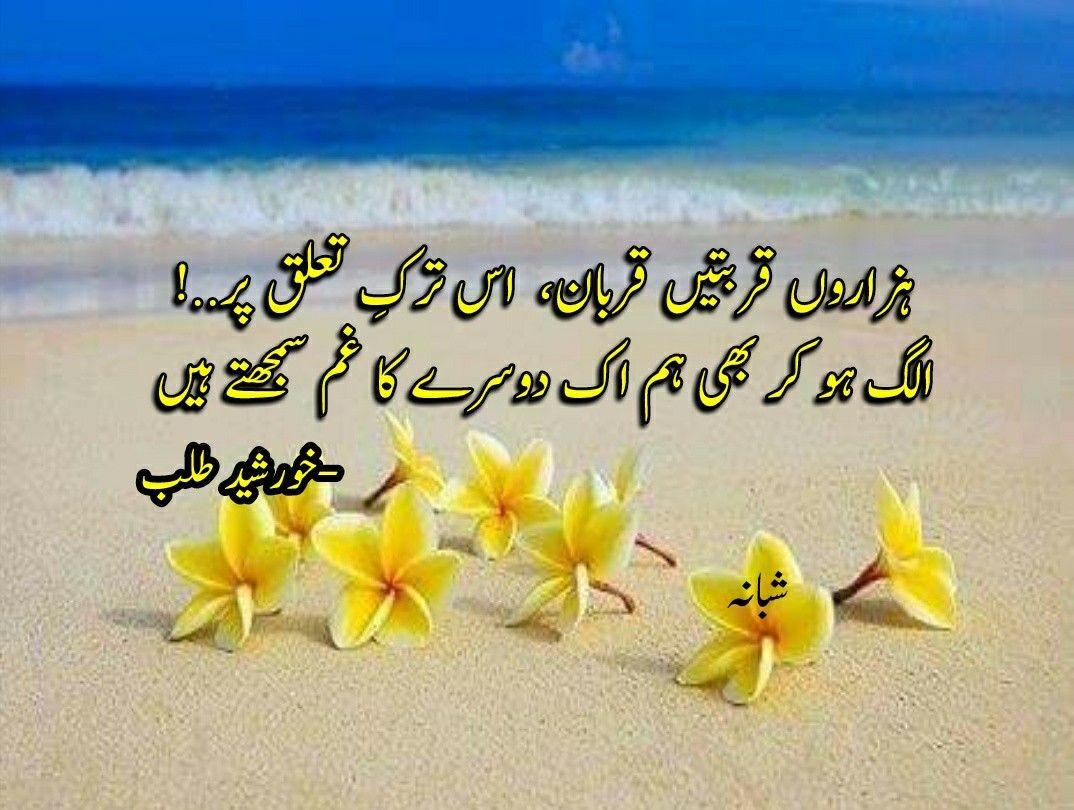 Pin by Shabana on ZarD pAttE ☆ زرد پتّے Urdu poetry
