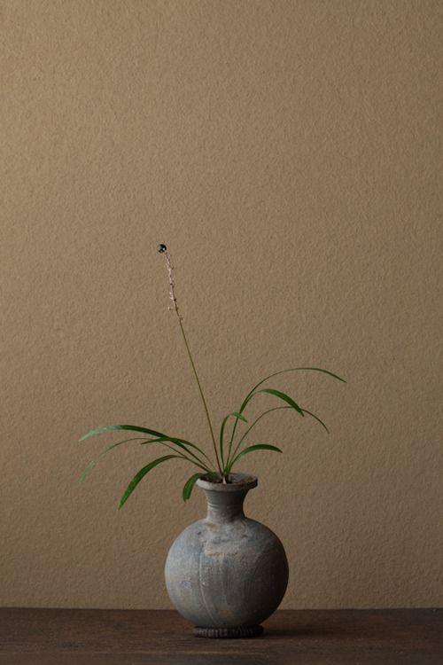 Kawase Toshiro, ikebana. Orchid