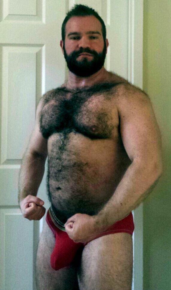 Gay Bear Post