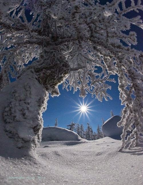 Shoot High Def  Winter  from Totally Outdoors is part of Winter scenery -