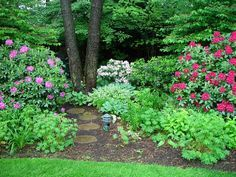 woodland gardens - Google Search