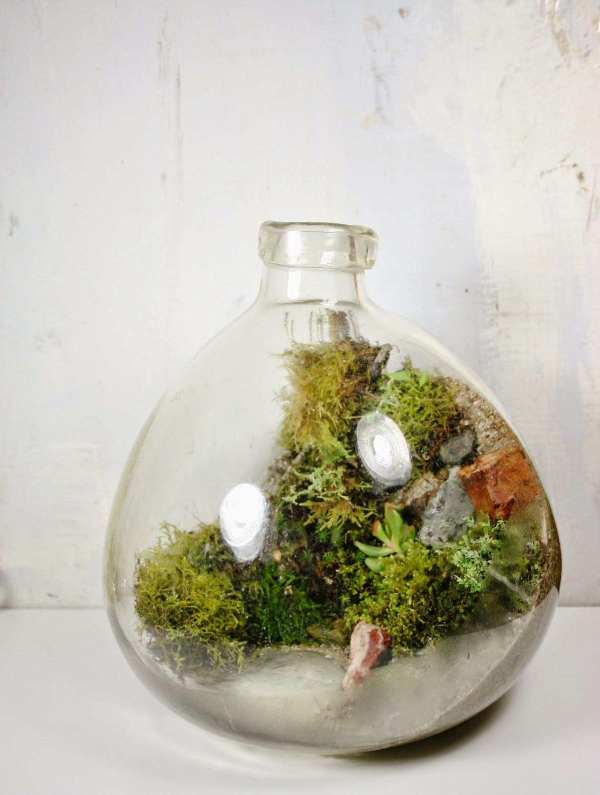 We Create Objects Of Wilderness. One Of A Kind Artisan Terrariums Of Local  Plants And Moss Inside Repurposed Found And Heirloom Glass Vessels. Every  Living ...