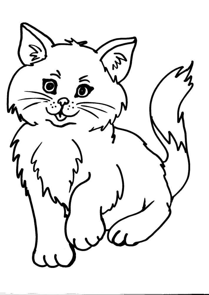Risultati Immagini Per Il Gatto E Il Coniglio Da Disegnare Disegni Da Colorare Animali Carini Disegni