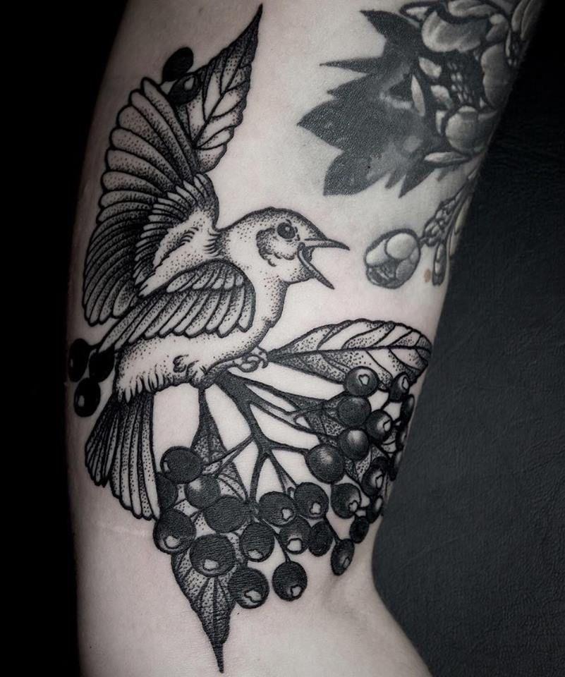 Dotwork Bird Fruits Botanical Tattoo Blackwork Flowers Neo Traditional Branch Berry Berries Elisabethatattoo Elisabet Traditional Tattoo Tattoos Trendy Tattoos