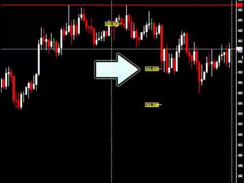 forex chat room