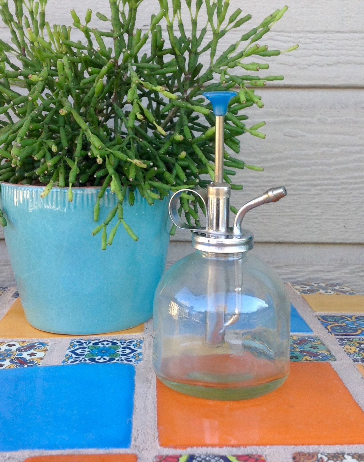 FREE SHIPPING-Vintage Clear Glass Plant Mister-Atomizer-Plant Sprayer-Soap Dispenser-Vintage Garden-Plant Decor-Bohemian-Garden Decor-Retro by ellansrelics02 on Etsy https://www.etsy.com/listing/478470560/free-shipping-vintage-clear-glass-plant
