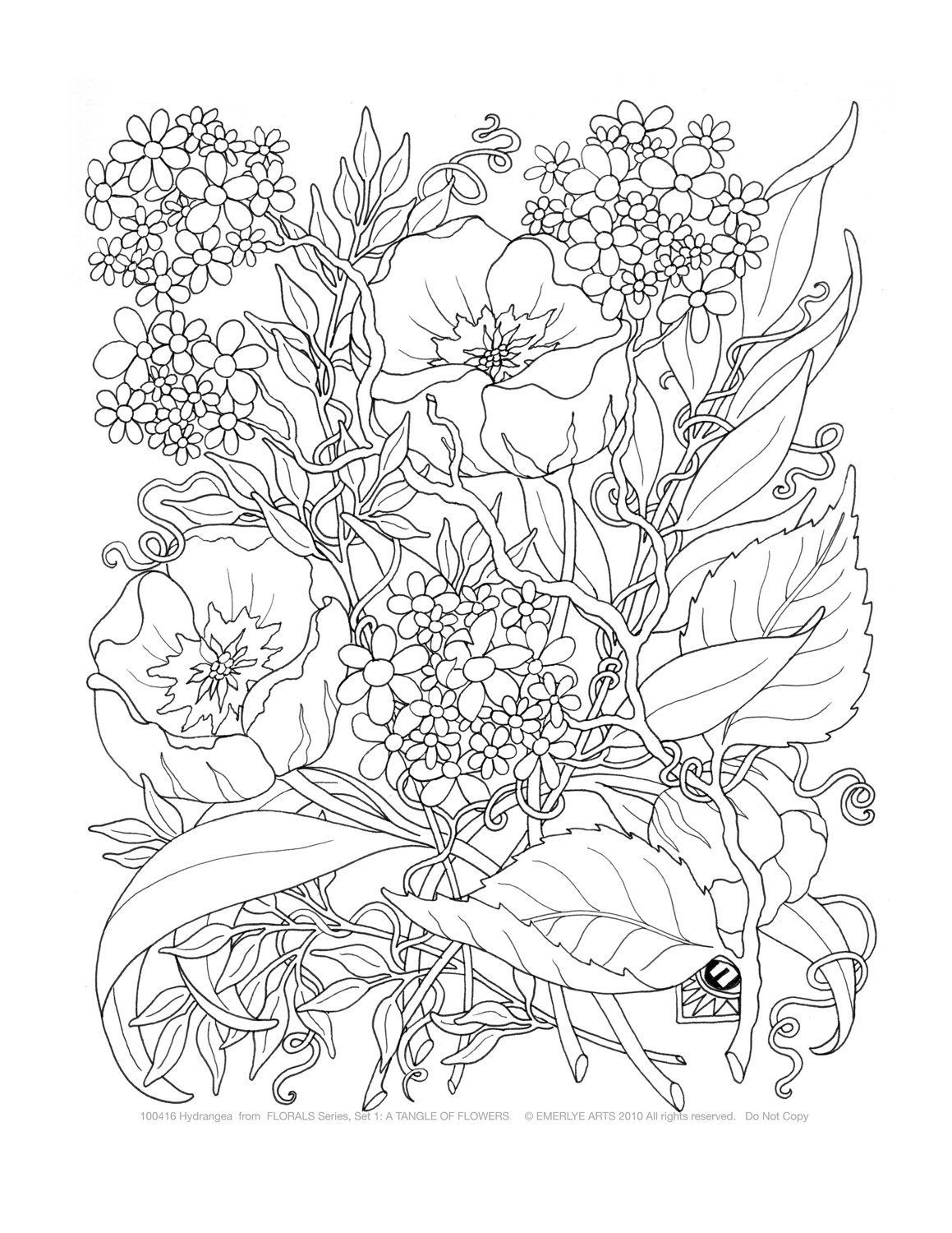 Coloring Pages for Adults - Free Large Images | раскраска ...