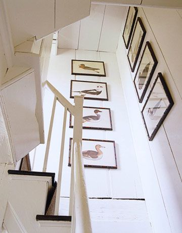 WSH loves a collection of bird prints for a beach cottage. Interior by Tom Scheerer. Via House Beautiful.