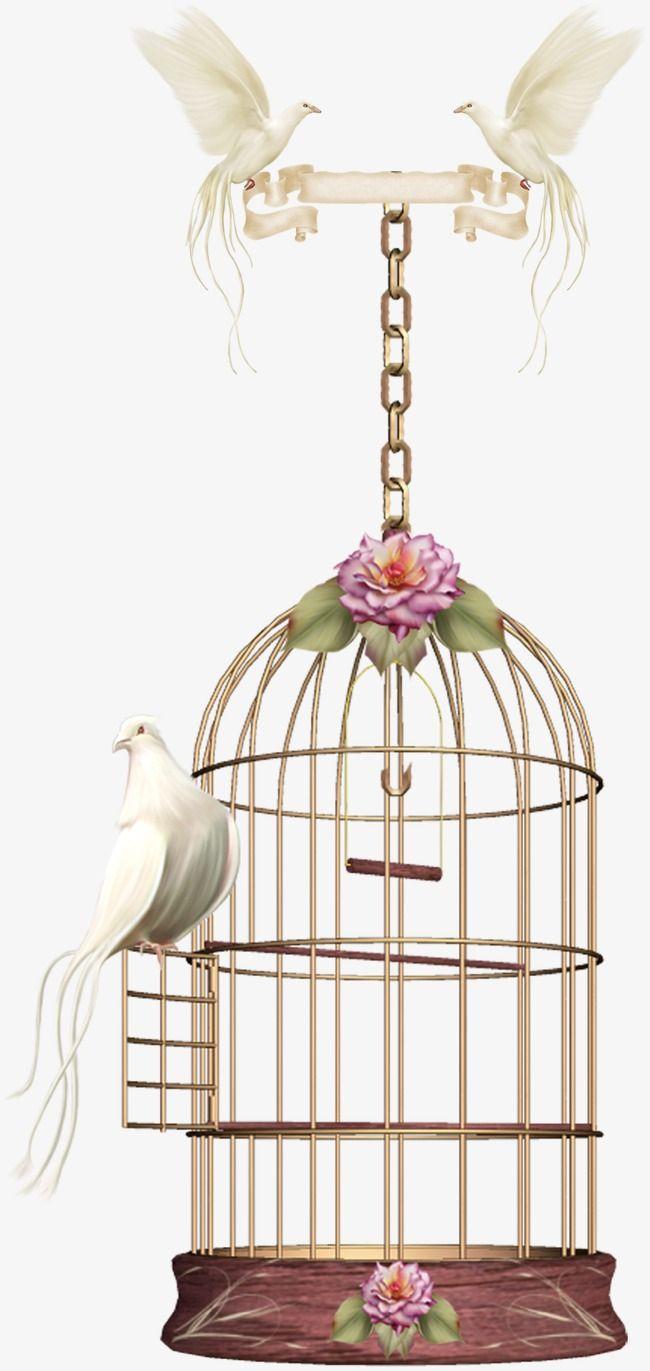 Birdcage Bird Cage Decor Bird Cage Clip Art