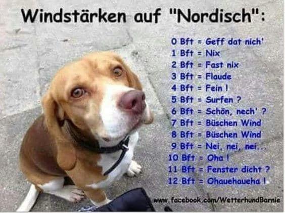 Photo of 17 Dinge, die du nicht verstehst, wenn du nicht in Norddeutschland aufgewachsen bist