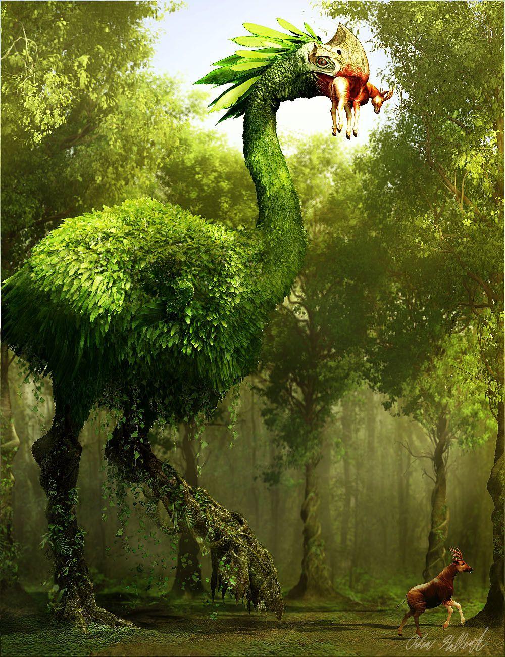Photo of Tree Stalker, Adam Hulbert