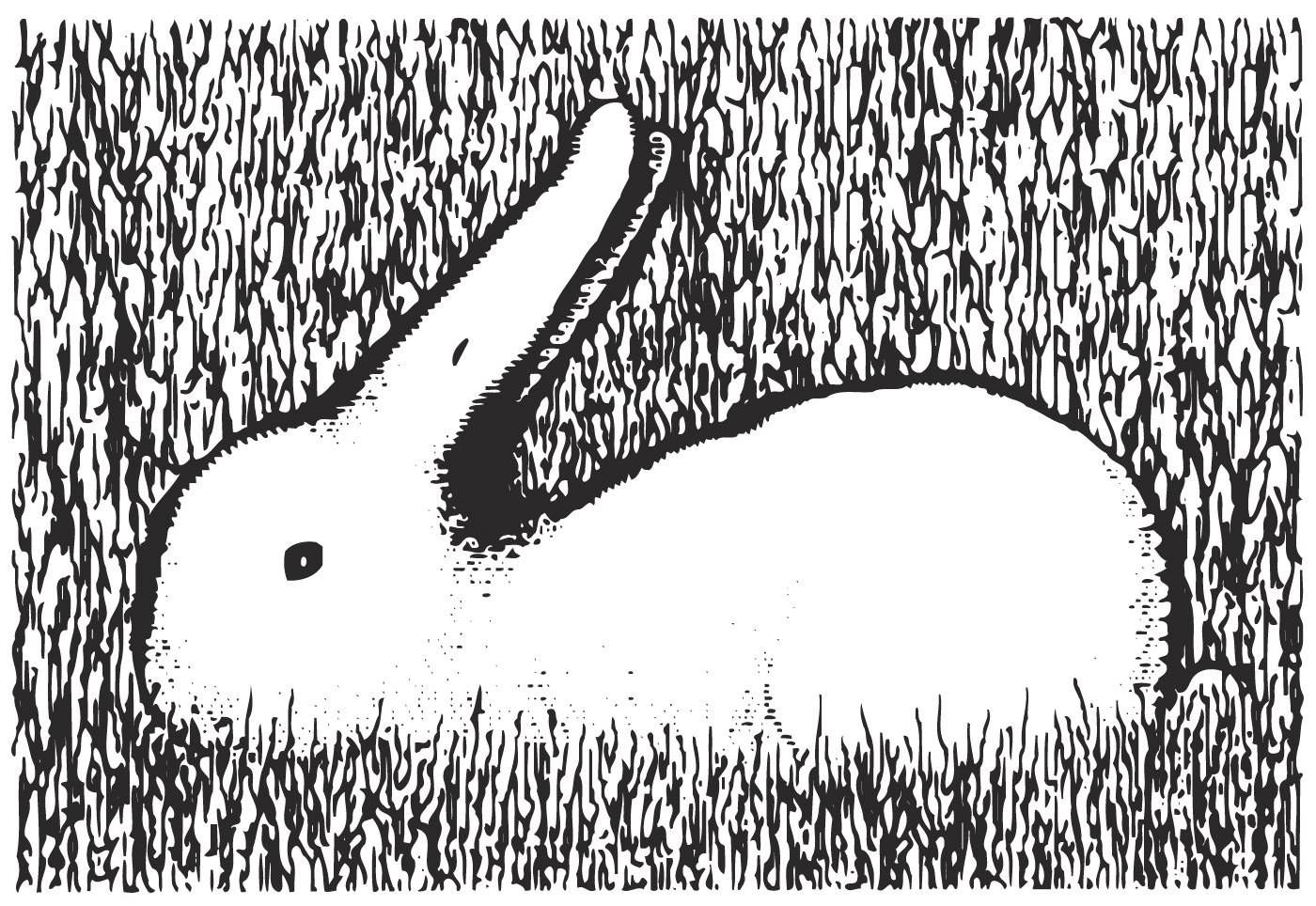 optical duck bunny illusion illusions rabbit sketch brain teasers cool خطای دید tricks mind eye hidden puzzles fun grass opticalillusion