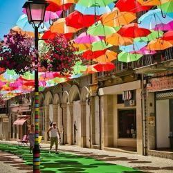 Springpad: parapluutje, parasolle...