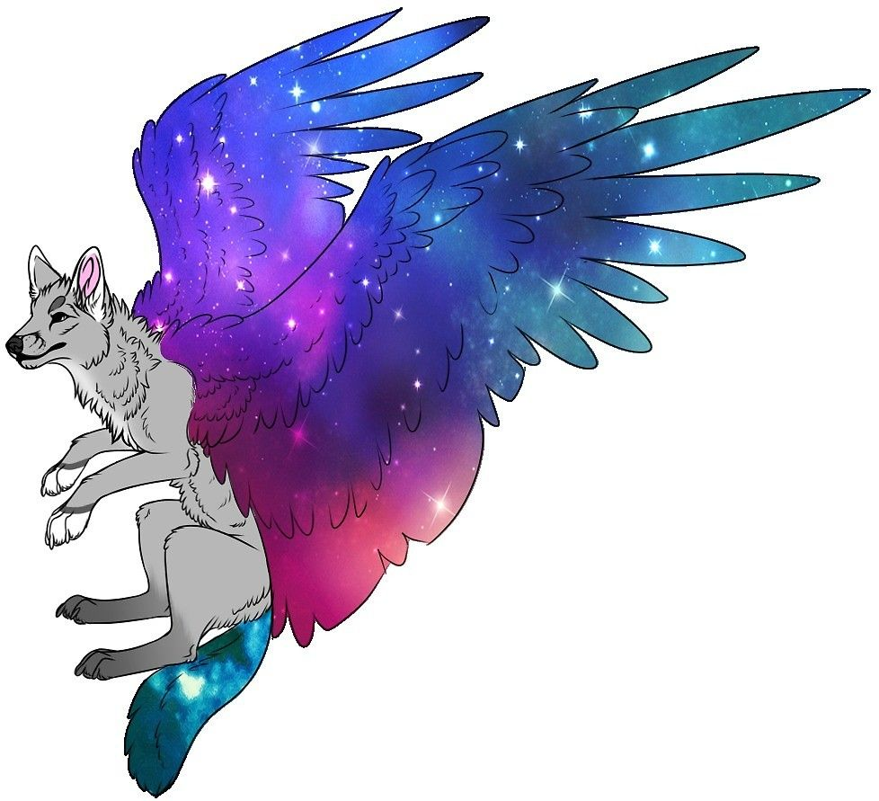 Pin By Emma Goodin On Pastas Galaxy Wolf Wolf Art Fantasy Wings Of Fire Dragons