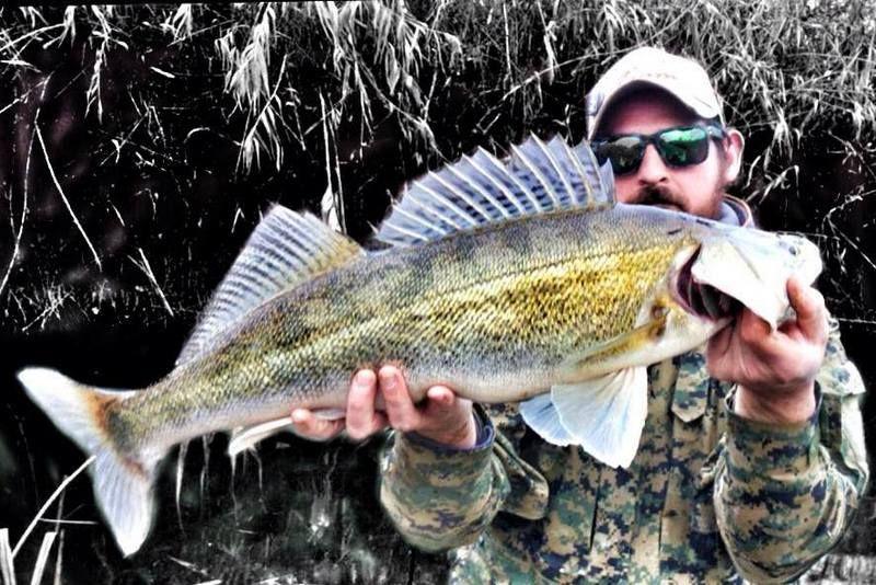 Foss Fishing con Predatori & Prede