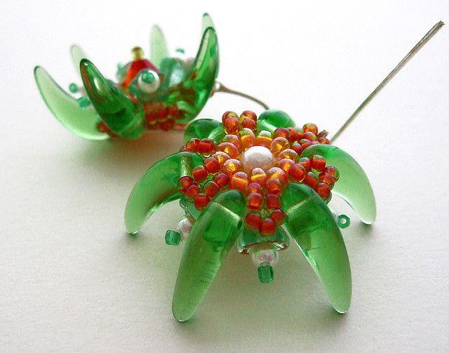 green starfish | Flickr