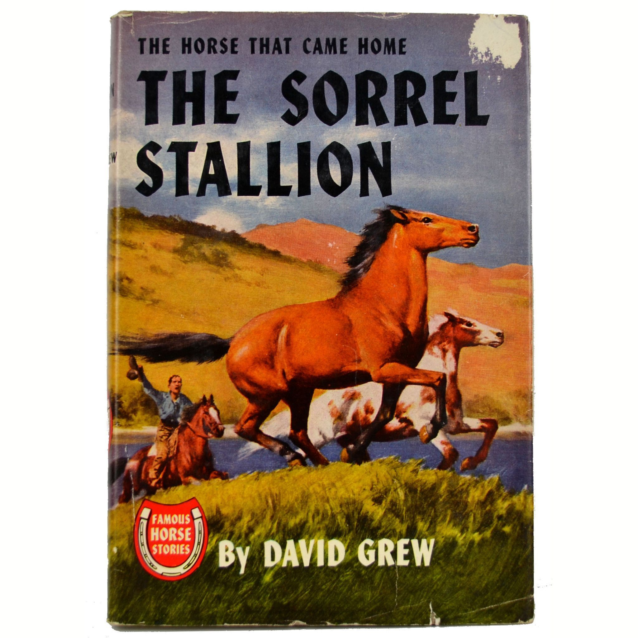 The Sorrel Stallion The Horse That Came Home 1951 David Grew Hardcover Book with Dust Jacket