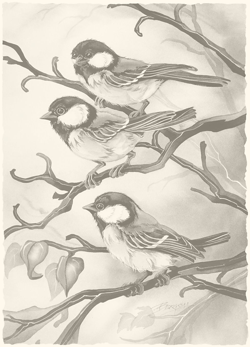 Alle Zwart Wit Platen Zijn Goed Uit De Printen Op 13 18 Cm Dieren Schilderen Verfkunst Prachtige Vogels
