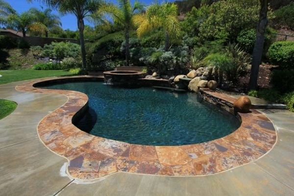 Kidney Shaped Swimming Pool Garden Pools Ideas Tropical Patio