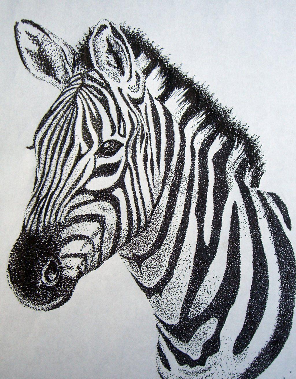 Zebra Sketch Stippling Art Zebra Drawing Zebra Art