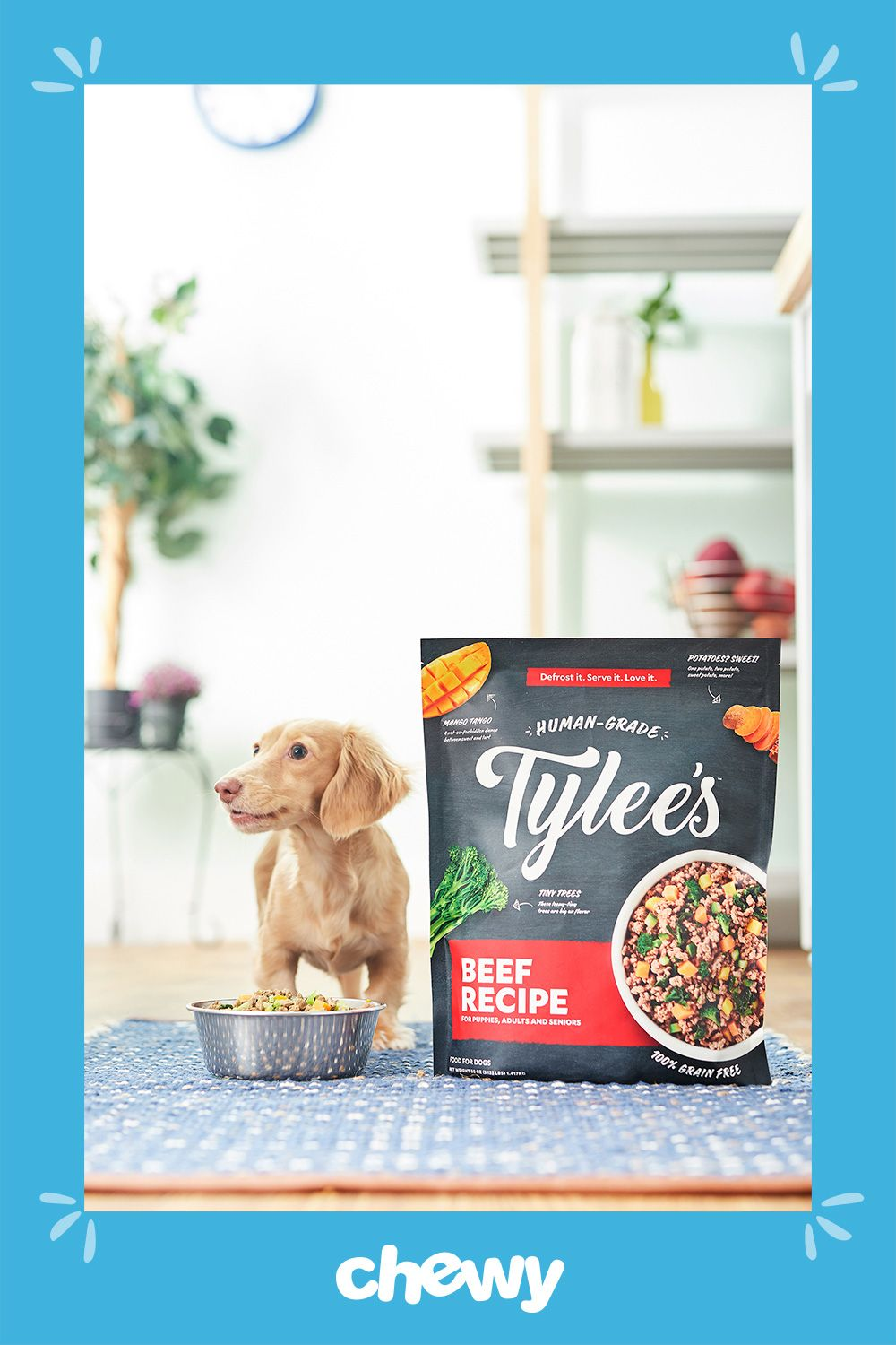 Tylee S Human Grade Dog Food Gives You The Benefits Of Healthy
