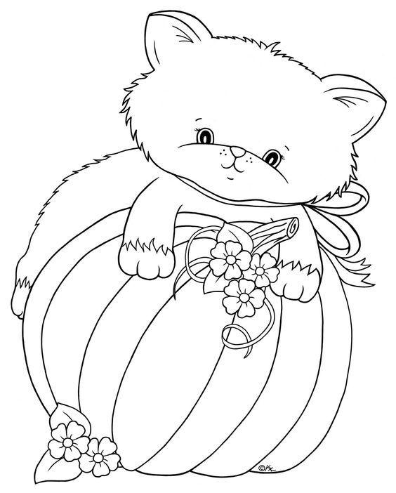 Pin von Wanda Twellman auf Just Cats 3 (and a few dogs)   Pinterest
