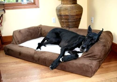 Xxxl Dog Bed Big Foam Sofa Couch Extra Large Size Great
