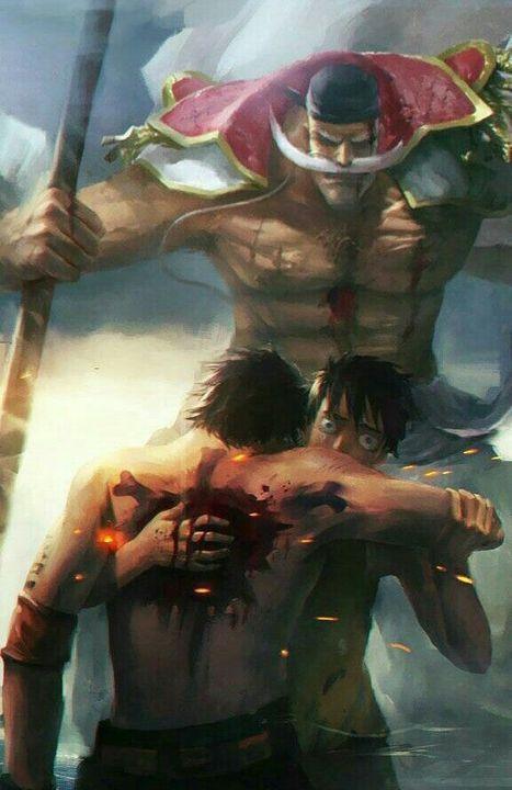 One Piece (hình ảnh) - No.9