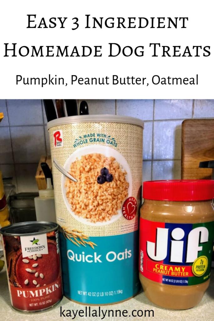 Homemade Dog Treat Recipe Pumpkin Peanut Butter And Oatmeal Recipe Dog Treats Homemade Recipes Dog Treats Recipes Pumpkin Easy Dog Treats