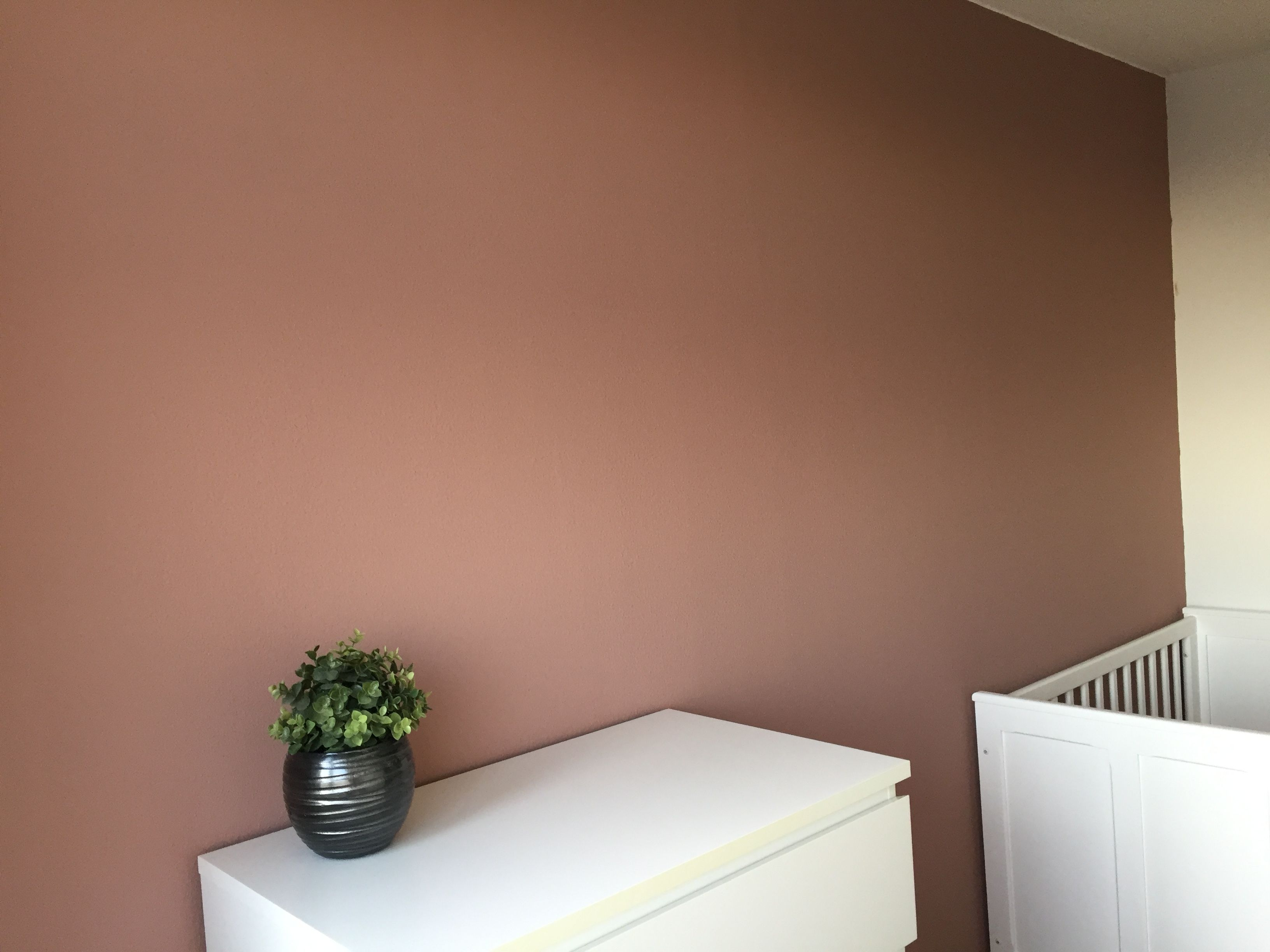 Aardetinten Muurverf Vt Wonen Soft Clay Muurverf Dog Mudroom In 2019 Muurverf Roze