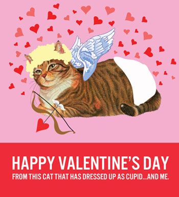 12 Cat-Themed Valentineu0027s Day Cards To Help Show You Care Cat - valentines day cards