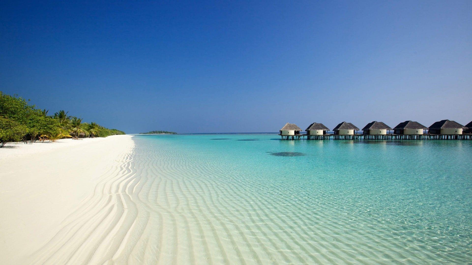 Bali Beach 1080p Wallpaper Hdwallpaper Desktop In 2021 Beach Wallpaper Wallpapers Beach Ocean Wallpaper