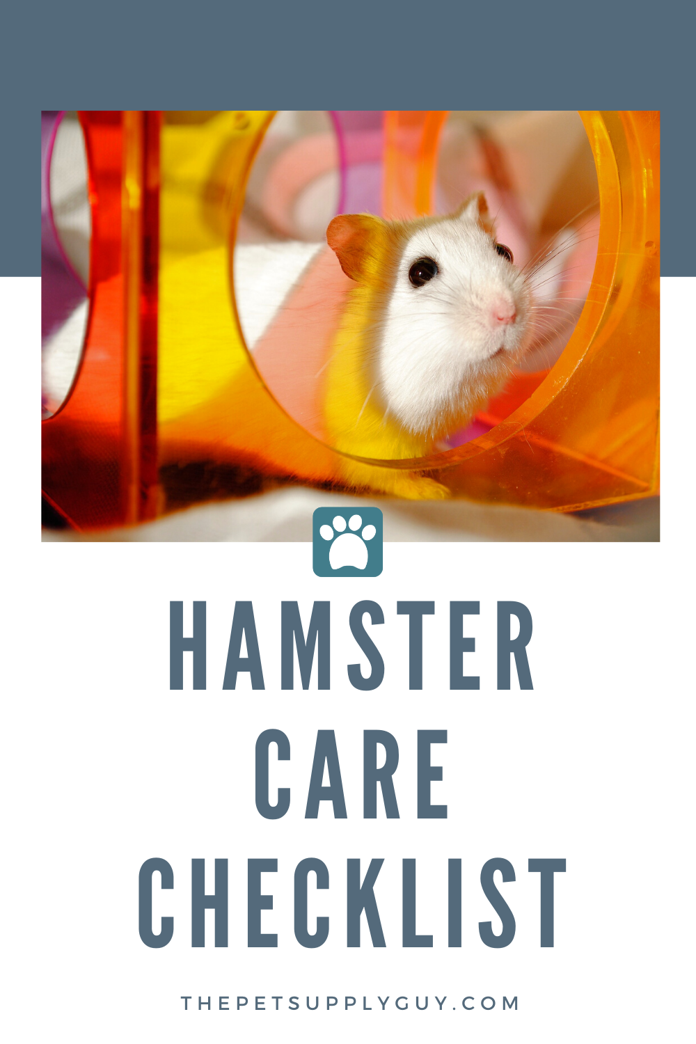 Hamster Must Haves (Buying Guide) thepetsupplyguy pet
