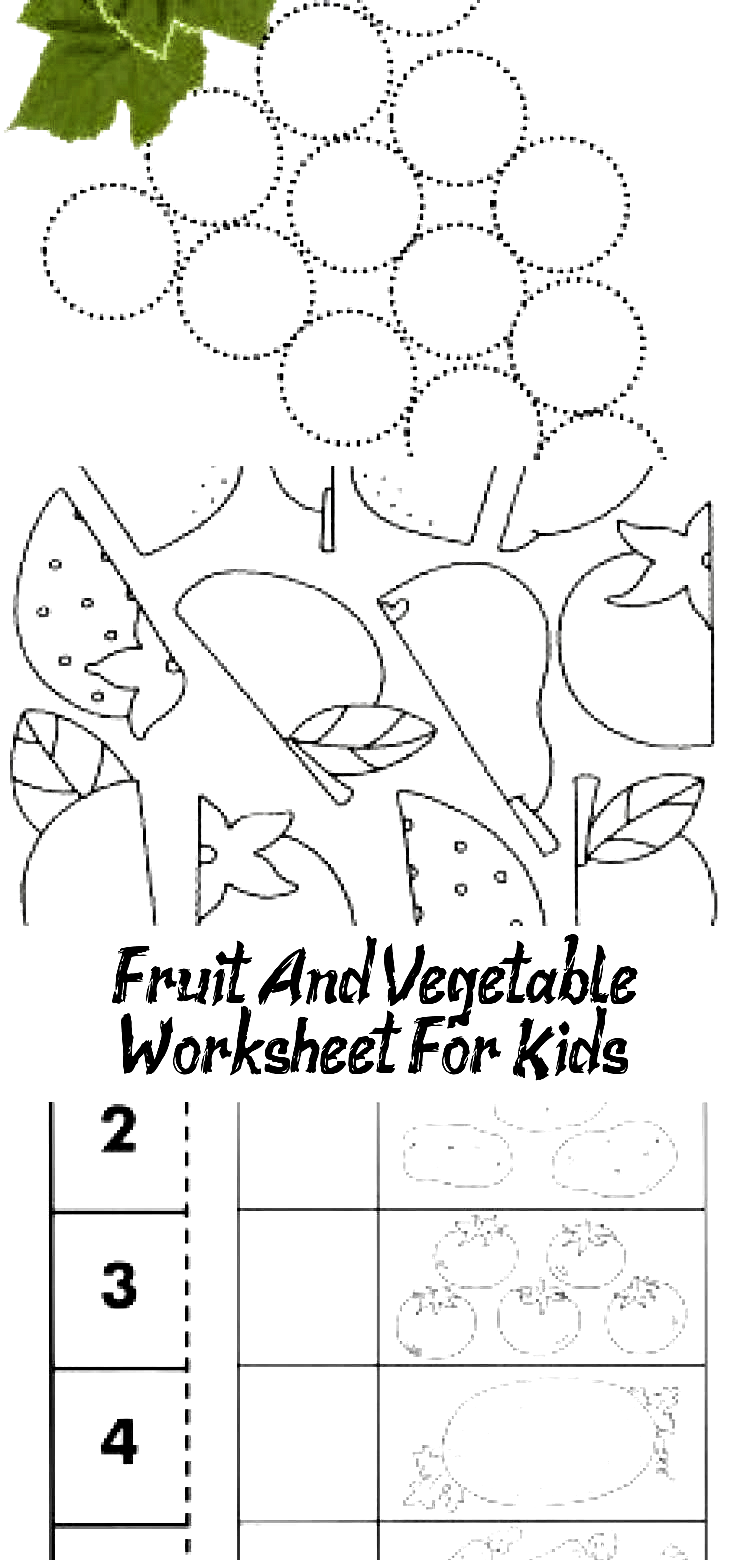 Pin On Vegetables [ 1560 x 750 Pixel ]
