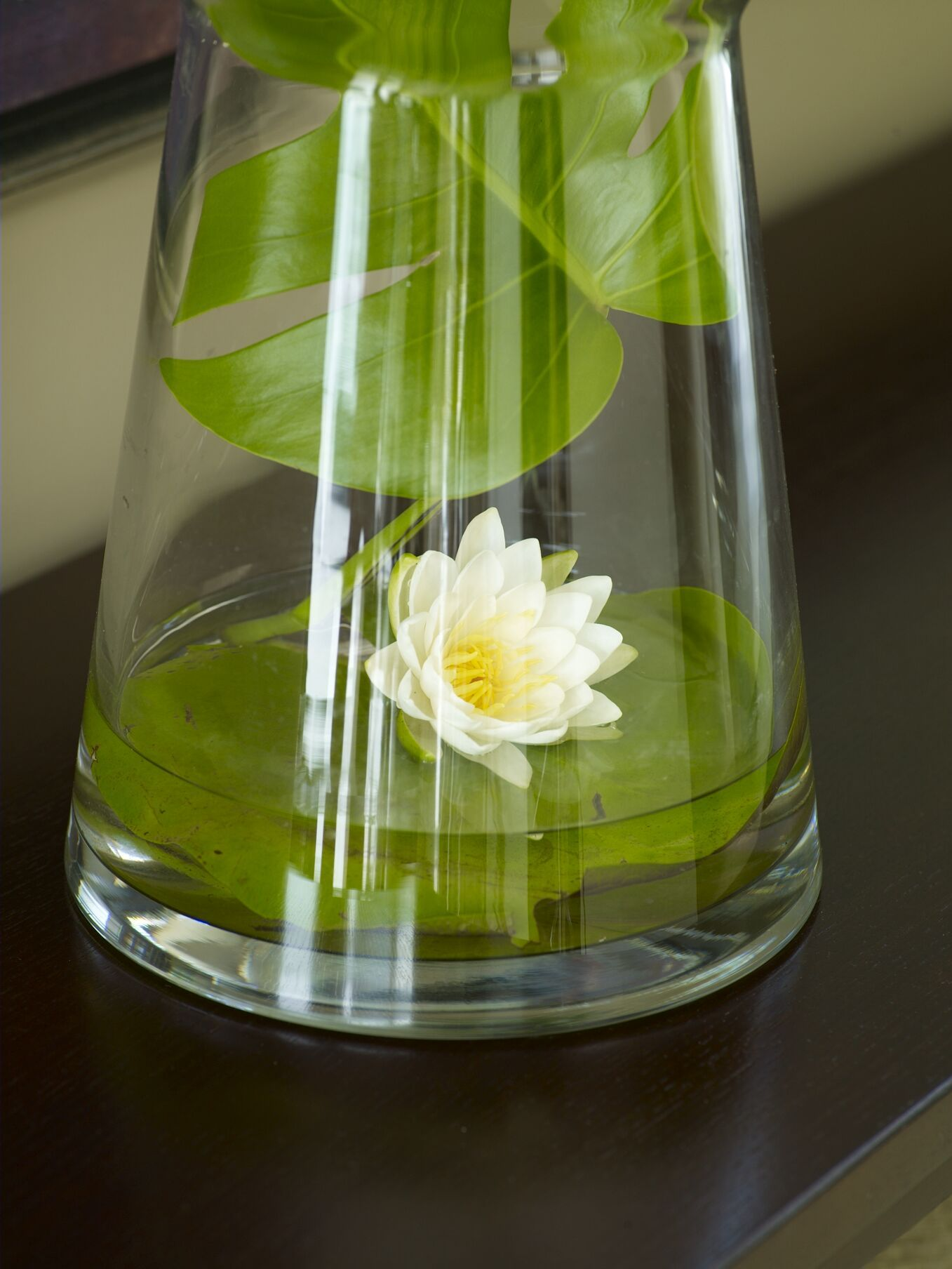 Love Floating Water Lilies Simple And Beautiful Decoration For